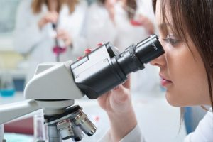 Asbestos testing - PLM Analysis NATA accredited