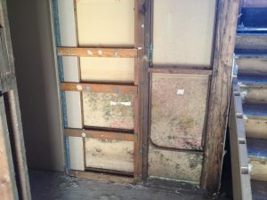 Mould Inspection - concealed mould in wall cavity